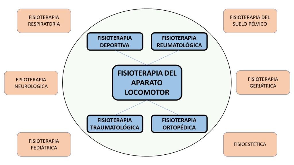especialidades en fisioterapia aparato locomotor deportiva traumatológica